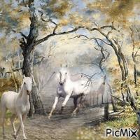 Pferde im Wald am frühen Morgen