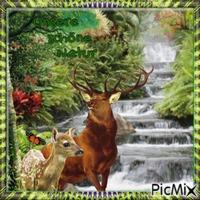 Notre belle nature.