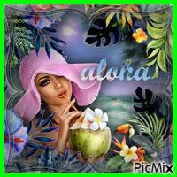 Contest  Aloha