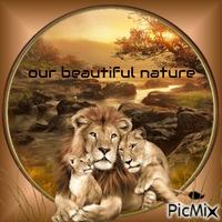 Notre belle nature
