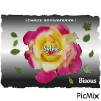 Bon anniversaire Sylvie