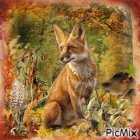 Le renard en automne.
