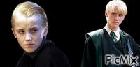 Draco malefoy évolution