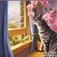 Chaton curieux à la Fenêtre