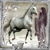 Le cheval de mes rêves.