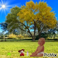 Baby in Spring sunshine