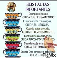 6 importantes
