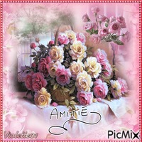 Amitié 😘