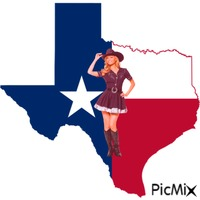 Texas cowgirl 3