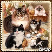 Unsere Freunde die Katzen