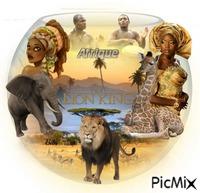 Aquarium Afrique