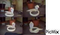 3D origami COBRA