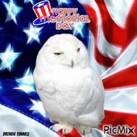 memorial day owl