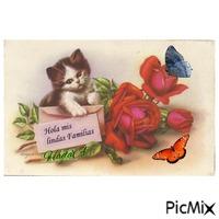 Una postal para ti