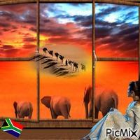 Afrique depuis une Fenêtre