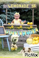 Young Lemonade Stand