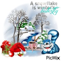 A Snowflake Is Winters Butterfly
