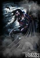 night of the bats