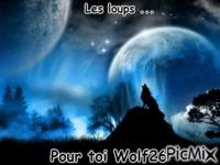 Pour toi Wolf26