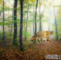 renard en automne