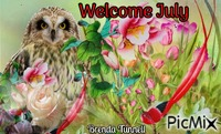 July owl