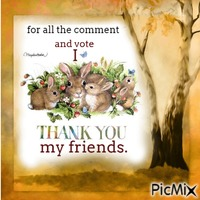 Thak You my friends