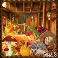 Fruits d'automne - Contest