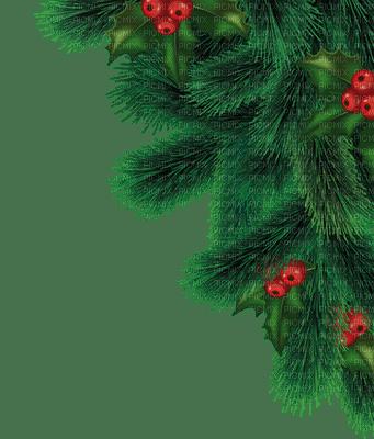 noel branche d 39 arbre avec des baies de houx tree deoration branch with holly berries christmas. Black Bedroom Furniture Sets. Home Design Ideas
