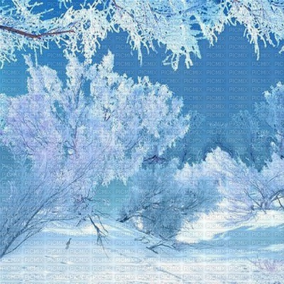 winter hiver paysage landscape forest snow neige fond background