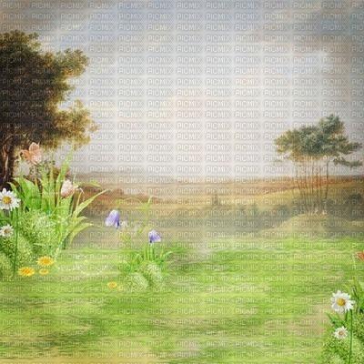 paysage printemps été landscape spring   background  fond  tube