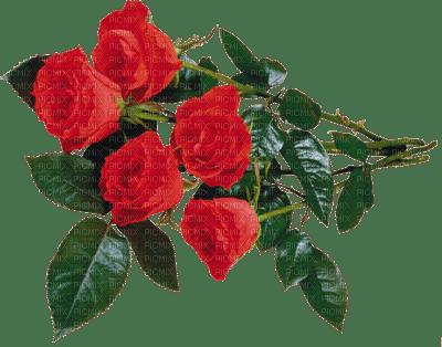 Bouquet.Red roses.Fleurs.Flowers.Victoriabea