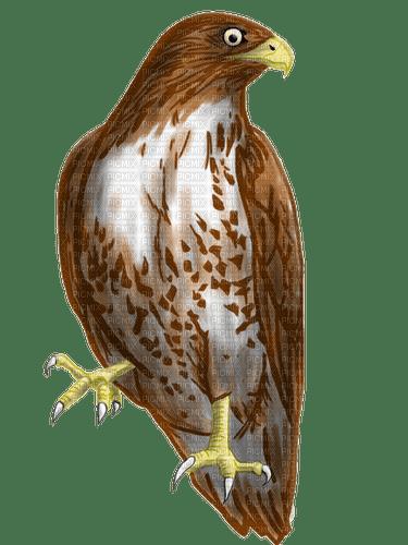 Kaz_Creations Bird