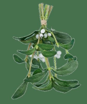 Kaz_Creations Deco Mistletoe