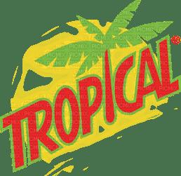 tropical text orange