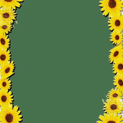 loly33 tournesol  frame