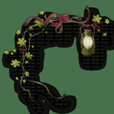 fairy lantern --fee lanterne