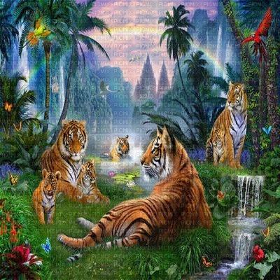 tiger in jungle  bg fond 🐯🐯