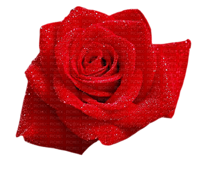 rose-rouge