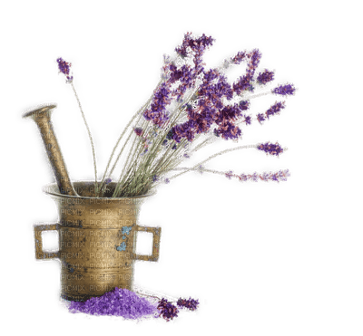 Lavender.Lavande.Pot.Victoriabea