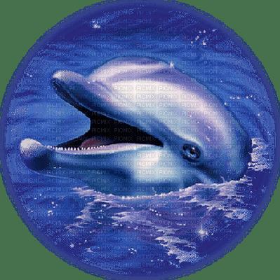tube dauphin