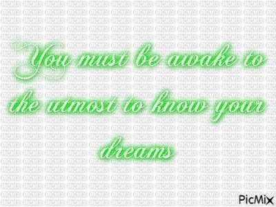 You must be awake to the utmost to know your dreams