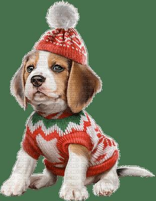 christmas puppy chiots de noel