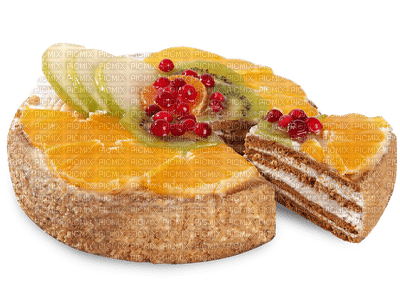 Kaz_Creations Fruit Cake Tart