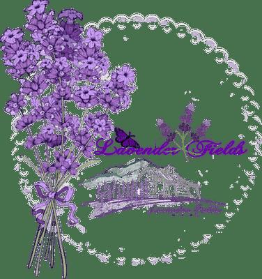 lavender frame deco lavande cadre