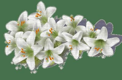 fleur-flower_fleurs-tube-lis-lily-decoration-white-blanc-image__Blue DREAM 70