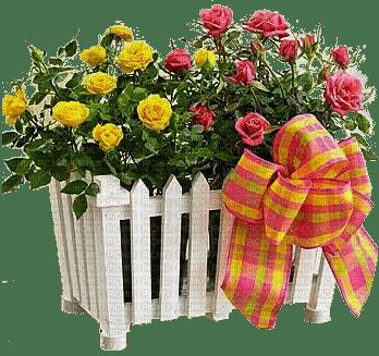 fleur des roses