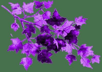 AUTUMN LEAVES PURPLE🍁 AUTOMNE FEUILLES VIOLET