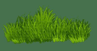grASs border herbe deco