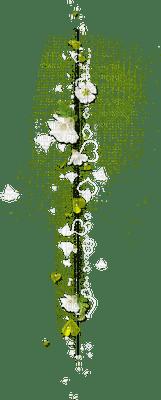 fleur verte.Cheyenne63