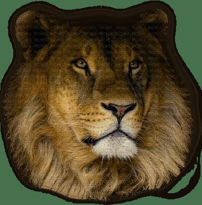 sylvain lion